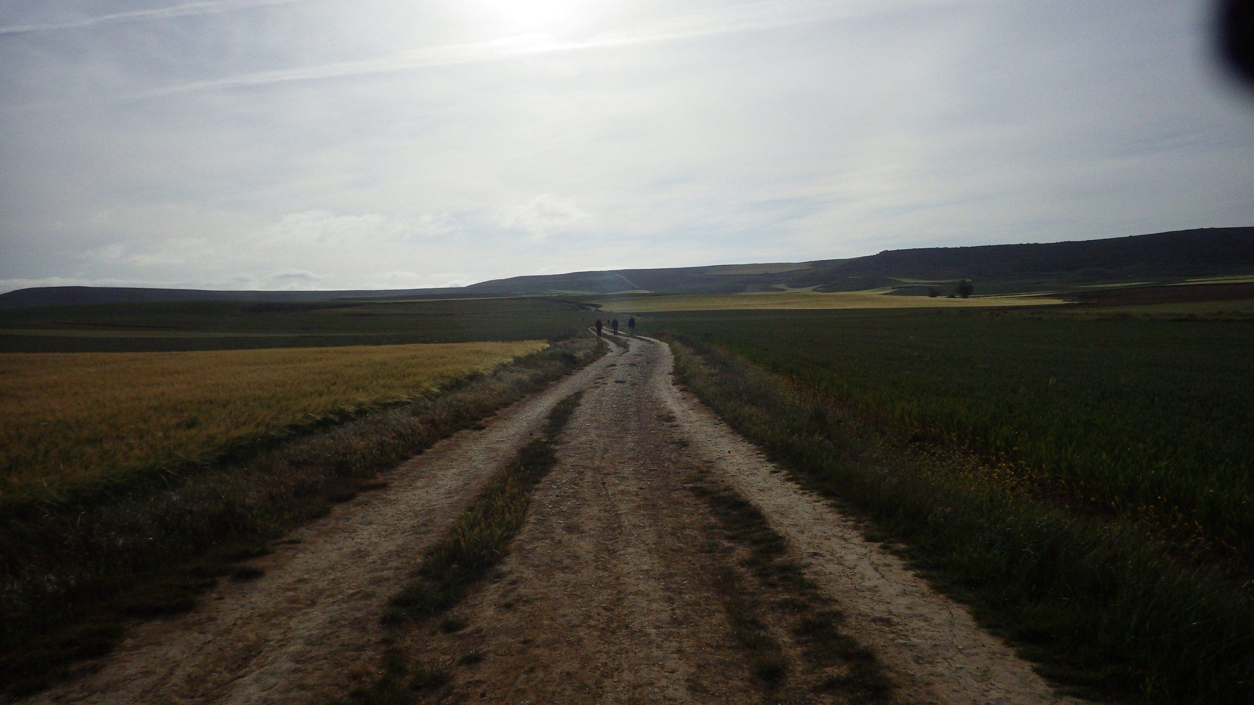 The Meseta on the Camino de Santiago